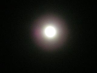 2010-01-01 20-56-07_0029.jpg