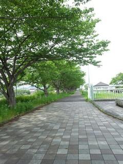 20140528_3.jpg